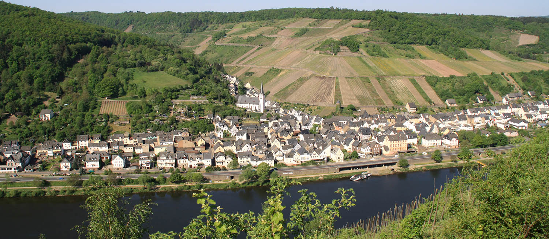 Weingut-Goldschmidt-Briedel-Mosel-1