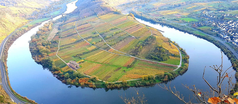 Weingut-Goldschmidt-Briedel-Mosel-9